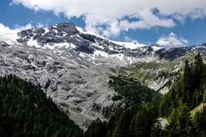 wald-grenze-in-den-bergen-tirol