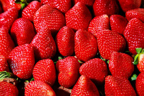 erdbeeren-ganze-früchte