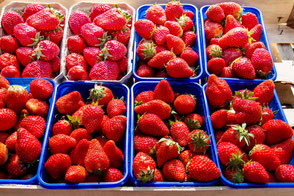 erdbeeren-in-schalen-auf-dem-wochenmarkt