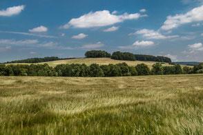 Sanfte Hügel und Wiesen unter blauem Wolkenhimmel-Masuren