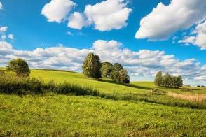 Grüne Hügel und Bäume unter blauem Wolkenhimmel