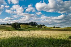 Hügelige Landschaft mit tief liegenden Wolken