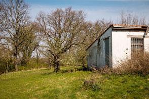 Winzerhütte in den Weinbergen