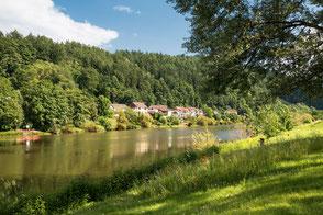 Ufer am Neckar mit Bäumen und Wiese im Sommer