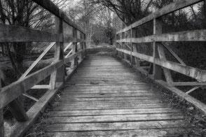 Hplbrücke zwischen Bäumen monochrome