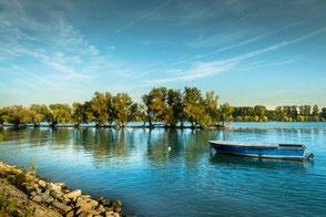 Blaues Boot liegt am Rhein-Rheininseln