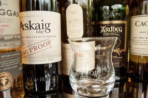 Spirits Schulung Whisky Whiskey Spirituosen Blended Malt Flaschen Glas