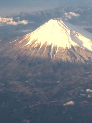 富士山の投稿画像
