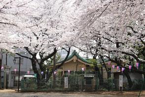 妙義神社と隣接する児童公園