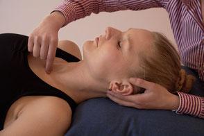 Die osteopathische Untersuchung