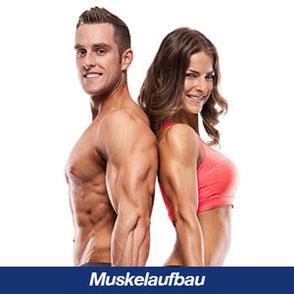 ems training Muskelaufbau
