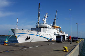 Seebäderschiff Helgoland am Helgoländer Süddamm
