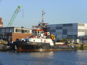 Der Schlepper Wulf 7 in Cuxhaven.