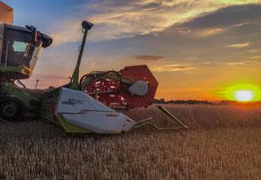 Landschaftsfotografie, Landwirtschaftsfoto