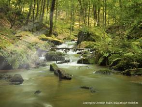 Bild mit Beispiel für Landschaftsfotografie, hier Bachlauf Jakobsweg.