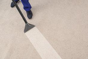 Teppichreinigung-mueden.de, Start, Bild grauer Teppichboden der gereinigt wird