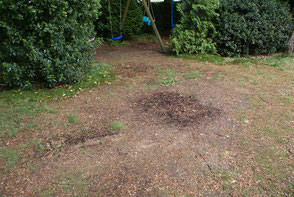 Even years after the war, there are still traces of the battle, in a garden opposite the house of the Stationsweg, a german foxhole is still visible (collection P. Reinders)