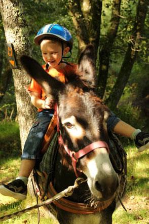 Pour une sortie avec les enfants : la ferme des Ânes de Vassivière / M Turin©CRT Limousin