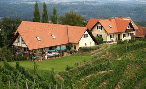 Im Revolutionsjahr 1848 erwarb der Grazer Kaufmann Carl Aberth das Weingut in Kitzeck. Seitdem wird das Familienunternehmen von Generation zu Generation weitergeführt.