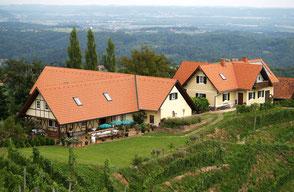 Bestens geeignet für Urlaub am Bauernhof  ist der Buschenschank Albert inmitten schöner Weingärten.