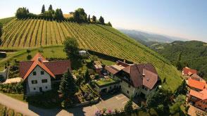 Das Gästehaus mit herrlicher Aussichtslage ist umgeben von Weingärten und mehreren Buschenschänken sowie Restaurants. Trotz allem herrscht bei uns absolute Ruhe.  Sie können bei uns die Schönheit der Landschaft und unser großes Hallenbad genießen.