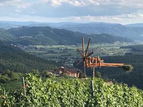 Herrliche Aussichtslage vom Gästehaus Grasch.