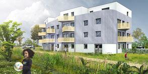 Ensemble immobilier - Vendenheim
