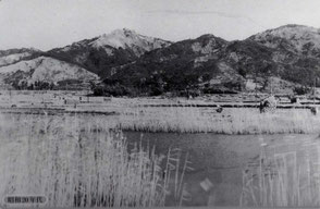 昭和20年代の交野山ははげ山状態(枚方・交野100年史より)