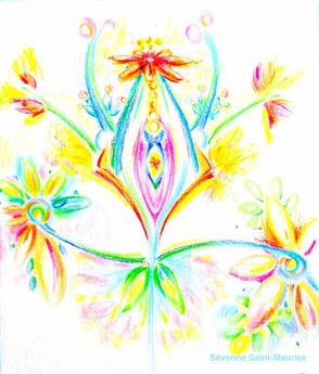 dessin intuitif, severine saint-maurice, lescerclesdelumiere.com, rosace, fleur, venus