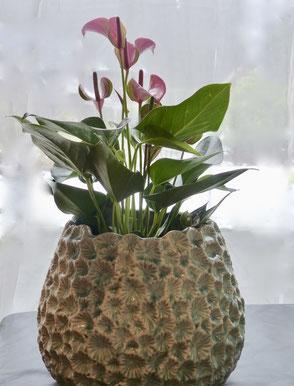Übertopf/Vase von Hoff Interieur ca H25xB28cm 71,90€
