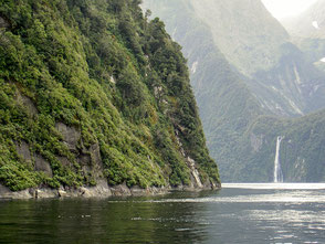 Neuseeland, Milford Sound