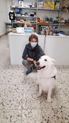 Weißer Schäferhund und Frau mit Futterspenden für die Tiertafe
