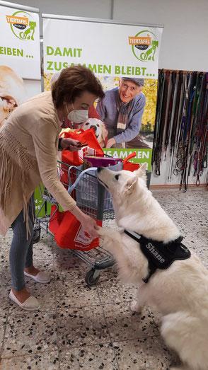Weißer Schäferhund und Frau mit Futterspenden für die Tiertafel