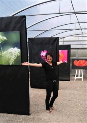 Ausstellung Geigers Gartenwelt Rottenburg