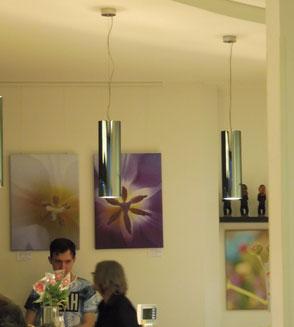 1.White tulip   2.violett tulip     3.Twins