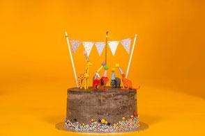 verjaardagstaart verjaardag kinderen speciale gelegenheid unieke taarten bloemen vers gemaakt circus kinderfeest verjaardagsfeest