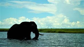 Namibia Reisetipps Top 15 Reiseziele