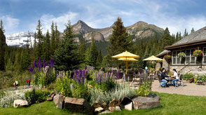 Hotels Banff Nationalpark: Deer Lodge
