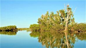 Australien Reisetipps Kakadu National Park