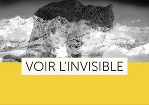 Voir l'invisible - Éloge de la vie sauvage et de l'effacement