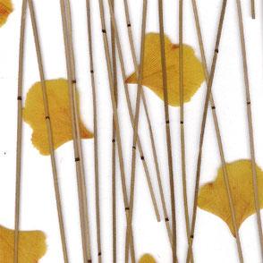 Lumicor Designplatten Natural complexma