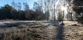 Januar 2018, Winterlandschaft