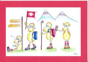 lustige Grusskarte Schafe Wanderung