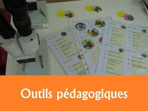 outil pedagogique malle fiche document de vulgarisation