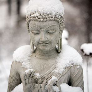Winterretreat Meditation Vipassana Metta Compassion Mitgefühl Tineke Osterloh Parin