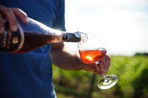 VinoLoire - Vincent Delaby - Excursions privilégiées dans les domaines vignobles du Val de Loire - Visites Touraine Bio et Gourmande