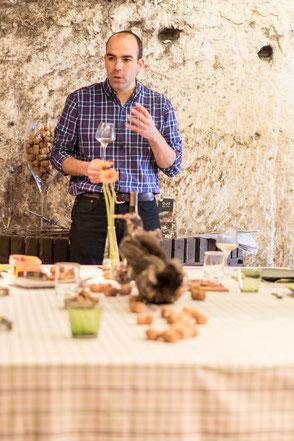 VinoLoire - Vincent Delaby - Excursions privilégiées dans les domaines vignobles du Val de Loire