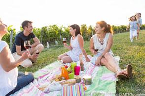 VinoLoire - Vincent Delaby - Excursions privilégiées dans les domaines vignobles du Val de Loire - Visites et pique-nique au coeur des vignes ©Stevens Frémont / ADT Touraine