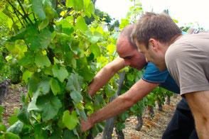 VinoLoire - Vincent Delaby - Excursions privilégiées dans les domaines vignobles du Val de Loire - Visites découverte autour de Vouvray