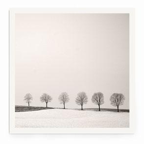 """Silence"" Art Print von Lena Weisbek"